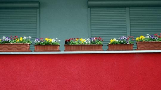 Lav flotte kapilærkasser i hjemmet